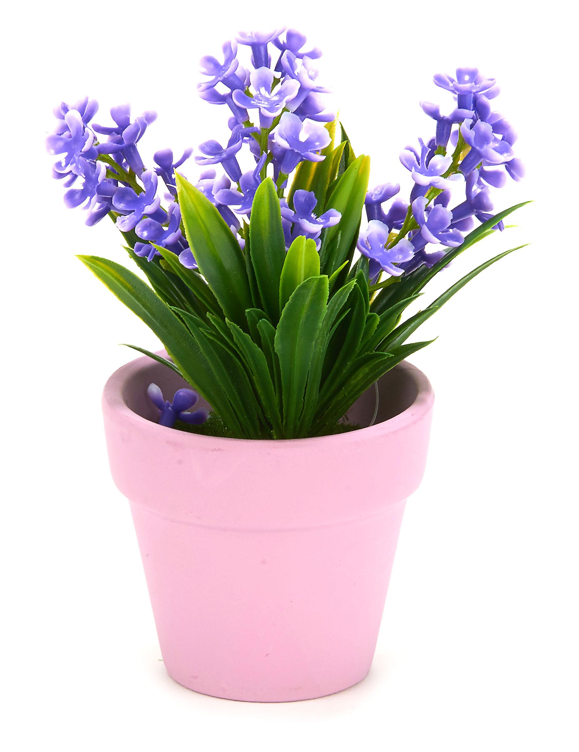 Piccola pianta con fiori finti viola su vegaooparty for Pianta fiori viola