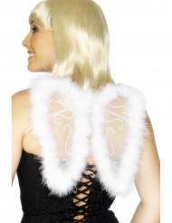 Ali angelo bianche per adulto