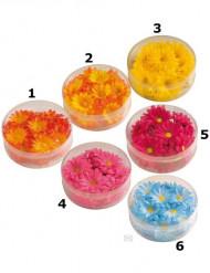 Fiori sintetici colorati