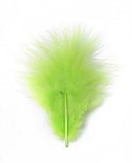 Piume verdi da decorazione 10 gr