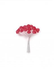 24 Mini rose corallo su stelo