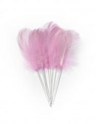12 Piume rosa con gambo