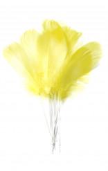 12 piume gialle con bastoncino