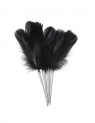 12 penne con piume nere