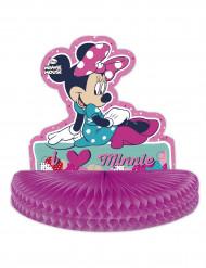 Centrotavola con Minnie