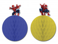 Due decorazioni Spiderman™ da appendere