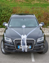 Kit decorazioni auto per matrimonio
