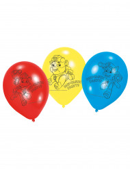 6 palloncini colorati in lattice Paw Patrol™