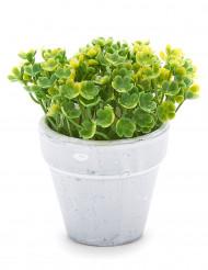 Piccolo vaso di fiori artificiali verde chiaro