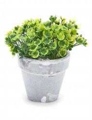 Piccolo vaso di fiori artificiali verdi