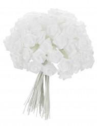 72 roselline in raso bianco