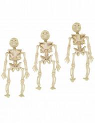 3 scheletri da appendere