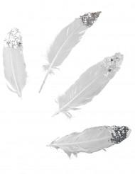 6 piume bianche con paillettes argentate lunghe 16 cm