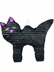 Pignatta gatto nero