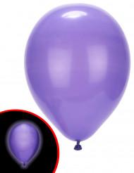 5 palloncini viola con LED illooms™
