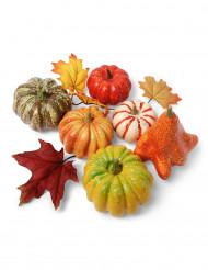 Assortimento vegetali d'autunno