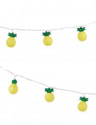 Ghirlanda luminosa con ananas