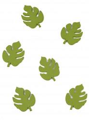 10 coriandoli in legno foglie tropicali