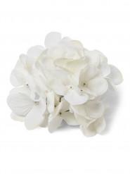 6 ortensie bianche in tessuto