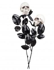 Rose con teschi Halloween
