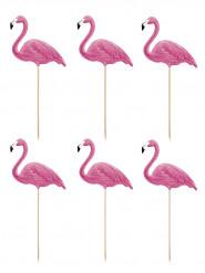 6 pics fenicotteri rosa