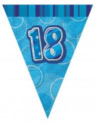 Ghirlanda con bandierine blu 18 anni