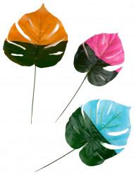 3 foglie tropicali colorate