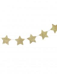 Ghirlanda con stelle dorate