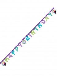 Ghirlanda lettere Happy Birthday Frozen™