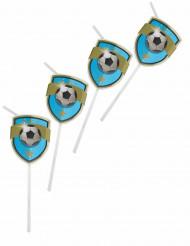 6 cannucce con medaglione Football Fans