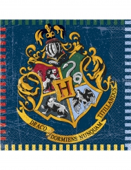 16 tovaglioli di carta Harry Potter™