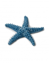 Stella marina grande blu