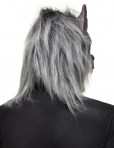 Maschera da lupo mannaro in lattice Halloween-1