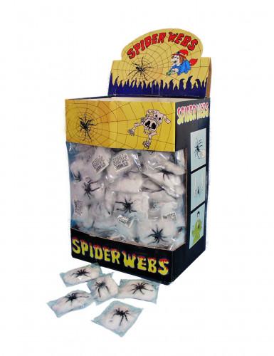 Ragno con ragnatela per Halloween-1