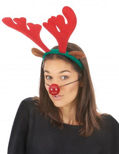 Kit natalizio da renna-1
