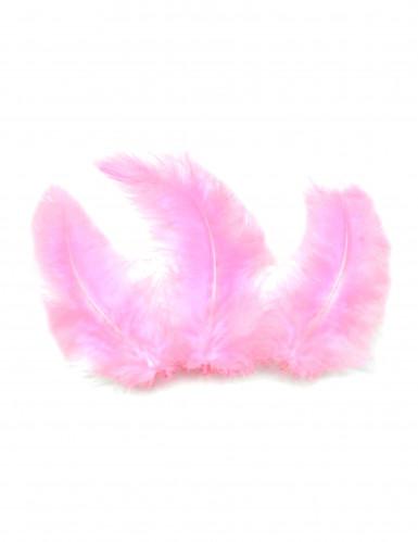 20 piume decorative di colore rosa