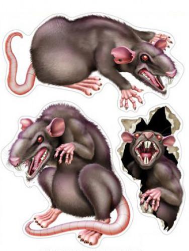 Confezione da 3 ratti autoadesivi
