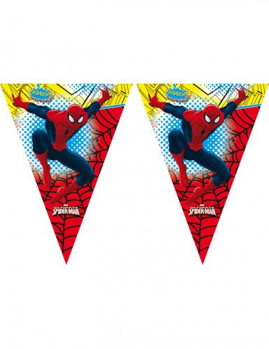 Ghirlanda con bandierine di Spiderman