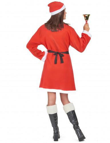 Costume da Mamma Natale-2