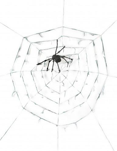 Decorazione a forma di ragnatela gigante con ragno per Halloween