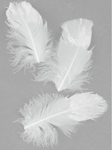 20 piume decorate con lustrini  9 cm