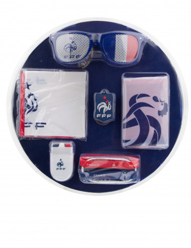 Kit completo da tifoso France FFF