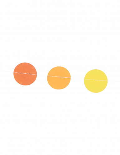 Mini ghirlanda decorativa multicolore-1