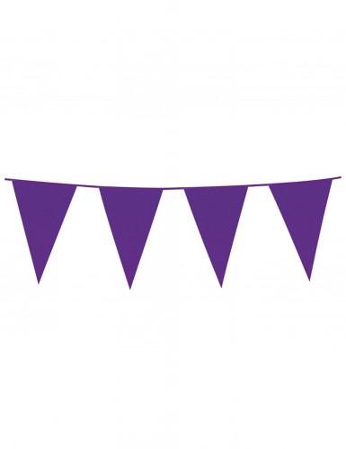 Ghirlanda con bandierine di colore viola