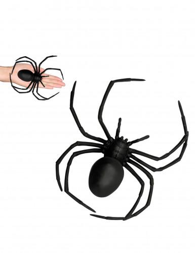Ragno nero di plastica 18 x 15 cm