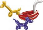 10 palloncini modellabili