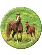8 piatti di carta di 23 cm Cavalli Selvaggi