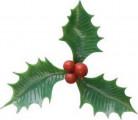 6 stecchini decorativi con agrifoglio Natale