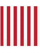 16 tovaglioli di carta a strisce bianche e rosse da 33 x 33 cm