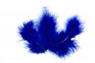 20 Piume decorative blu reale